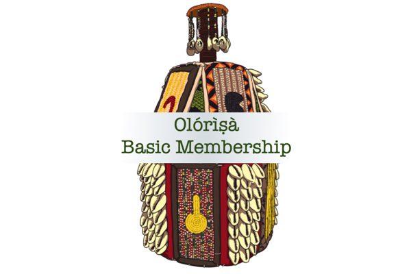 Basic Membership 600