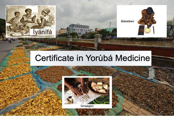 Yorùbá Medicine JPG N